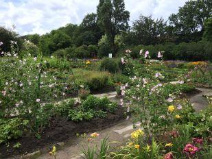 Ботанический сад Балтийского федерального университета им. Иммануила Канта